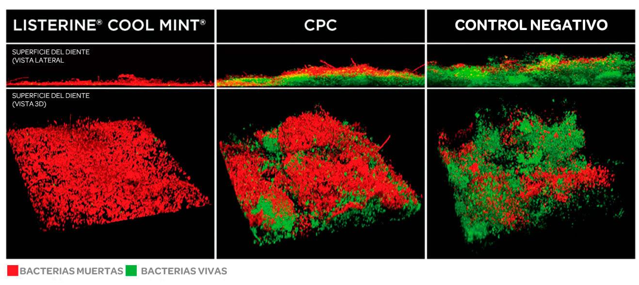 Imagen de microscopía electrónica: LISTERINE® vs. CPC
